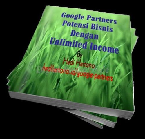 HOT SALE Terlaris Panduan Google Partner Bisnis Unlimited In e