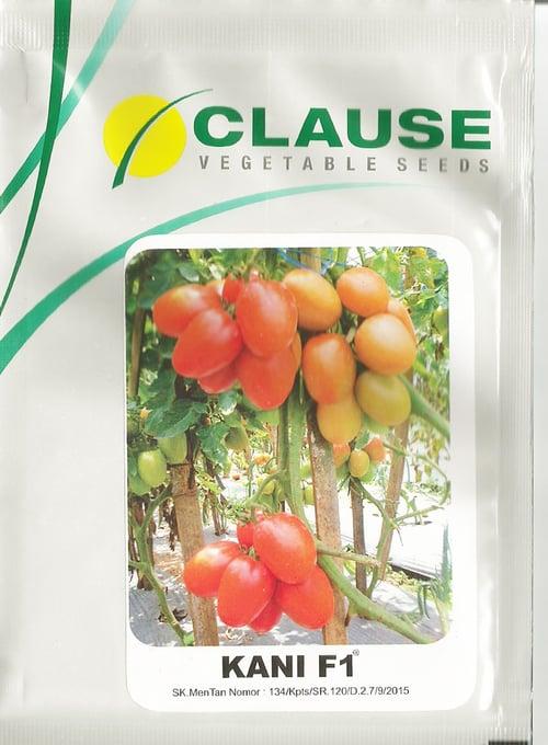 Benih Tomat Kani - CLAUSE