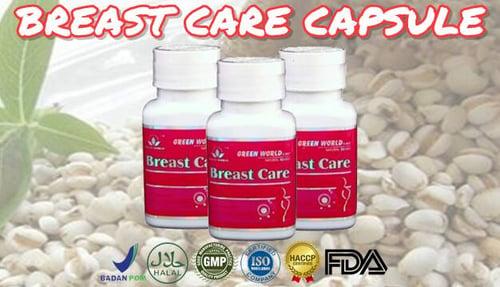 Green World Breast Care Capsule Supplemen Perawatan Payudara