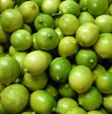 Jeruk Lemon Lokal Brastagi