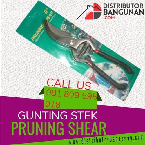 Gunting Stek