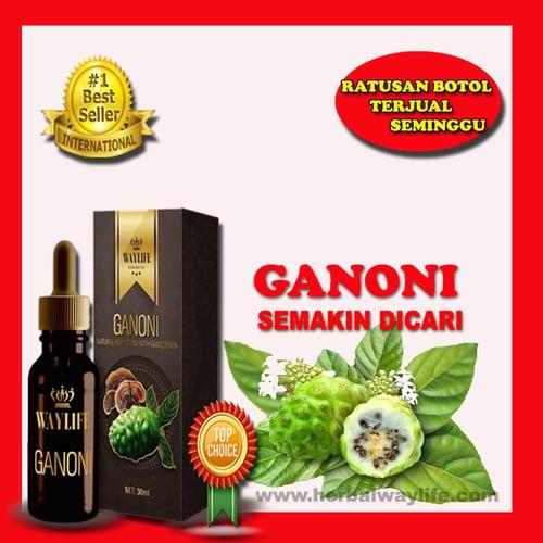 Obat Luka Diabetes Tanpa Operasi Sembuh Ganoni Produk Malaysia