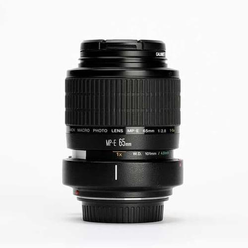 Canon Lens MP-E 65mm f2.8 1.5X Macro Photo