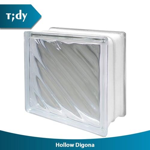 TIDY Glass Block Hollow Digona 8x19x19 cm