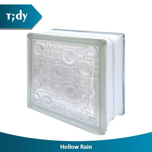 TIDY Glass Block Hollow Rain 8X19X19Cm