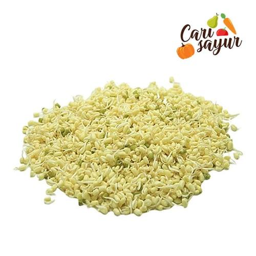 CARI SAYUR - Tauge Rawon (1 kg)
