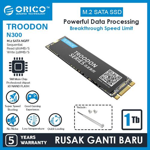 ORICO1TBSSDM.2SATA2280TROODONSERIES-N300-1TB