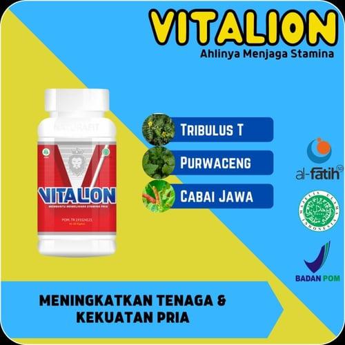 Obat Herbal Vitalion Meningkatkan Tenaga Kekuatan Menambah Kejantanan