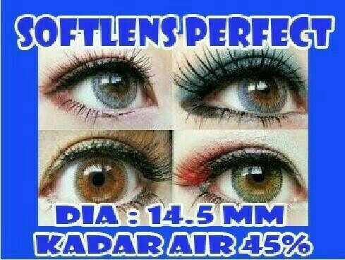 Softlens PERFECT / SOFT LENS Water 60% dia 14.5mm Colour Lens KOREA