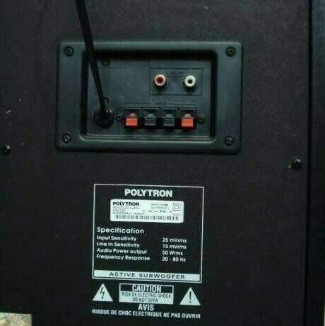 POLYTRON Subwoofer Speaker PSW-500