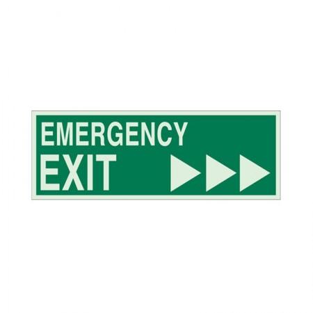 """BRADY 90596 B-324 """"Emergency Exit"""""""