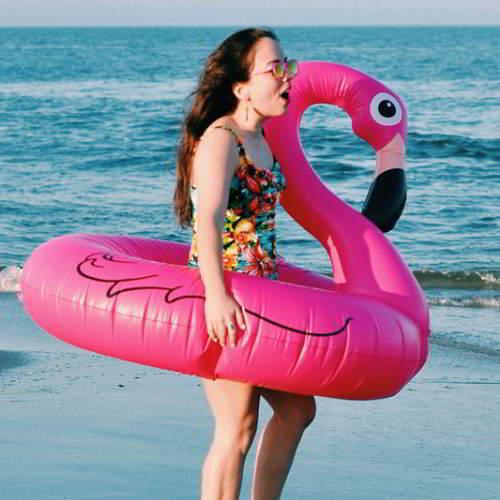 Swan Design Swim Ring 6pcs RBDE5C-Pink